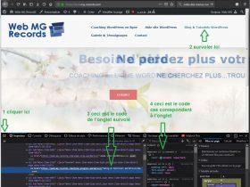 tutoriel wordpress couleur onglet : panneaud'outils de dévelopement